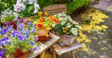 spring_flowers_work5